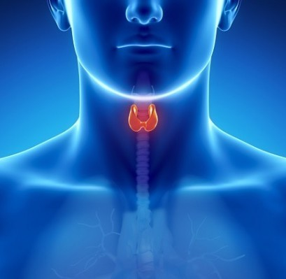 Thyroid and Parathyroid Surgery Center of Excellence